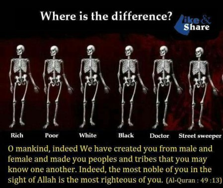Whats_Difference